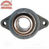 15years Exprienced Manufactured Pillow Block Bearing