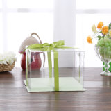 umweltfreundliche freie faltende Verpackungsnahrungsmittelkastenplastiktortenschachtel (Haustierkasten)