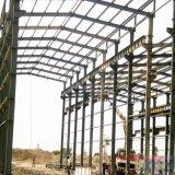 Gruppo di lavoro di Houseing del magazzino della struttura del blocco per grafici d'acciaio dell'ampia luce con le migliori illustrazioni
