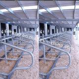 Стойло Galuanised коровы оборудования скотоводческого хозяйства стальное гибкое свободно