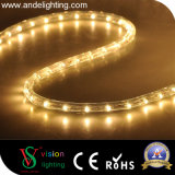 Transparent 10mm, 13mm PVC en forme ronde LED Rope Lights