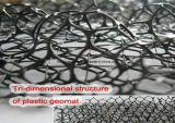 斜面のためのプラスチック3D Geomat (腐食のgeomat)