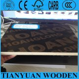 4ft*8ft Construction Plywood와 Shuttering Plywood