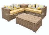 樹脂の柳細工のソファーの庭の家具