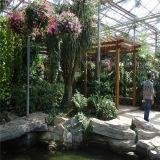 Serre chaude commerciale pour l'hôtel écologique de tourisme