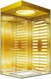 Gearless牽引Vvvfは起点に運転するドイツの技術(RLS-250)の別荘のエレベーターを