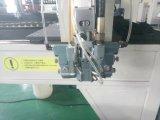 Máquina do vedador da gaxeta do plutônio do poliuretano de Fipfg (DS-30)