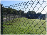 庭に使用するPVCによって塗られるチェーン・リンクの塀かダイヤモンドの網