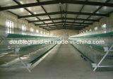 Las aves de corral prefabricadas de la estructura de acero contienen, casa de pollo, edificio agrícola