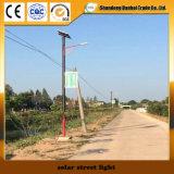Indicatore luminoso di via solare di alta qualità con il comitato solare (12W)