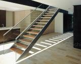 Fabricantes de la escalera/escaleras de madera estándar/derecho escalera en Wood&Glass