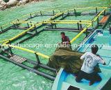 Cage carrée de pêche de HDPE en mer profonde