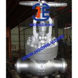 Нормальный вентиль стали углерода ANSI/API/DIN сваренный электростанцией