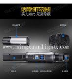 De handbediende Draadloze Microfoon van de Karaoke van het Systeem van Microfoon gelijkstroom-38
