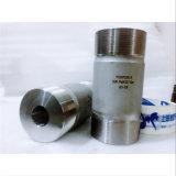 Il taglio del getto di acqua di alta qualità parte il cilindro ad alta pressione per la pompa Waterjet dell'intensificatore