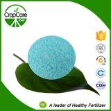 Constructeur hydrosoluble d'engrais de l'engrais 19-19-19 de NPK