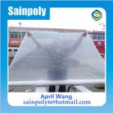 Hydroponicのための低価格そして容易にインストール済みプラスチックフィルムのマルチスパンの温室