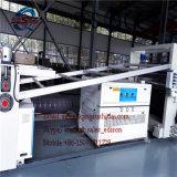 La ligne en pierre de marbre artificielle en plastique PVC a imité le panneau de marbre de feuille/mur/la machine de panneau décoration intérieure/chaîne de production