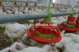 디자인 자동적인 닭 농장 집은 야옹하고 운다