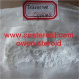 테스토스테론 Cypionate 근육 건축업자는 테스토스테론 Cypionate 분말을 보충한다