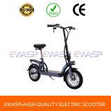 Ce keurde Volwassen Ongebruikelijke Brushless Aangepaste Motor 2 de Elektrische Autoped van het Wiel goed