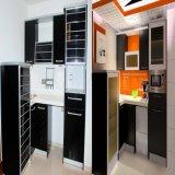 Gabinete de cozinha moderno popular da mobília