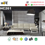 Gute Qualitätsmodernes Möbel-Rosa-echtes Leder-Sofa eingestellt (HC229)