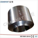 Geschroefte het roestvrij staal leidt 1.4301, de Montage van het Lassen X5crni1810