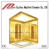 Kleiner Innenglashaupthöhenruder-Aufzug für Person 2