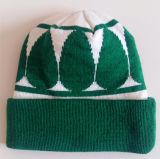 A listra bordou o chapéu nenhum tampão do Knit do chapéu do Beanie dos Eaves