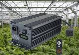 La coltura idroponica HPS coltiva la reattanza chiara di 315W CMH Digitahi per il crescente sistema