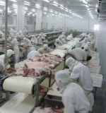ポーク肉処理部屋の冷蔵室のフリーザー
