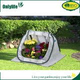 Onlylifeの熱い販売の庭の小型Fodableのプラント温室