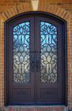 Quadratische oberste neue Entwurfs-bearbeitetes Eisen-Doppelter Eintrag-Türen
