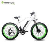 Vélo électrique de gros pneu avec le moteur arrière