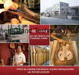 Набор гитары DIY Fingerboard Rosewood изготовленный на заказ