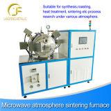 Equipamento térmico da micrôonda, micrôonda Multifunction
