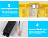 Hhd heißer verkaufender vollautomatischer Miniei-Inkubator (YZ8-48)