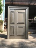 Puerta de aluminio inoxidable residencial de la seguridad