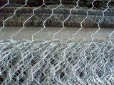 [أنبينغ] مصنع إمداد تموين يغلفن [وير نت] سداسيّة مع [لوو بريس] [هيغقوليتي]