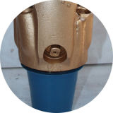 """6-1/2 """" бит c/бит утеса/буровой наконечник для Drilling газа добра воды бурения нефтяных скважин Drilling"""
