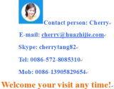 Profil en plastique de Huazhijie UPVC pour le guichet et la porte