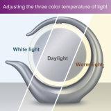 직업적인 점화 메이크업은 LED 빛으로 2 바탕 화면에 의하여 점화된 1X/7X의 둘레에 확대한다 비춘다
