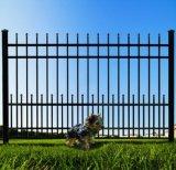 애완 동물 담을%s 가진 자유로운 Maintanence에 의하여 직류 전기를 통하는 편평 정점 정원 담