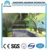 Precio material de acrílico modificado para requisitos particulares del proyecto del tanque del tiburón del túnel del acuario