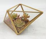 Succulent moderne mis en pot de décoration de bâti artificiel en métal