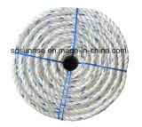 Bianco della corda dei pp Danline con l'azzurro del Aqua
