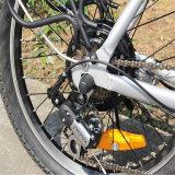전기 자전거 (RSEB-636)를 접히는 중국 싼 20 인치