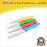 les couteaux en acier de vente chauds de Stainle de la cuisine 5PCS ont placé avec le support