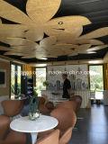 현대 Conenvient 이동할 수 있는 Prefabricated 또는 조립식 다방 또는 바